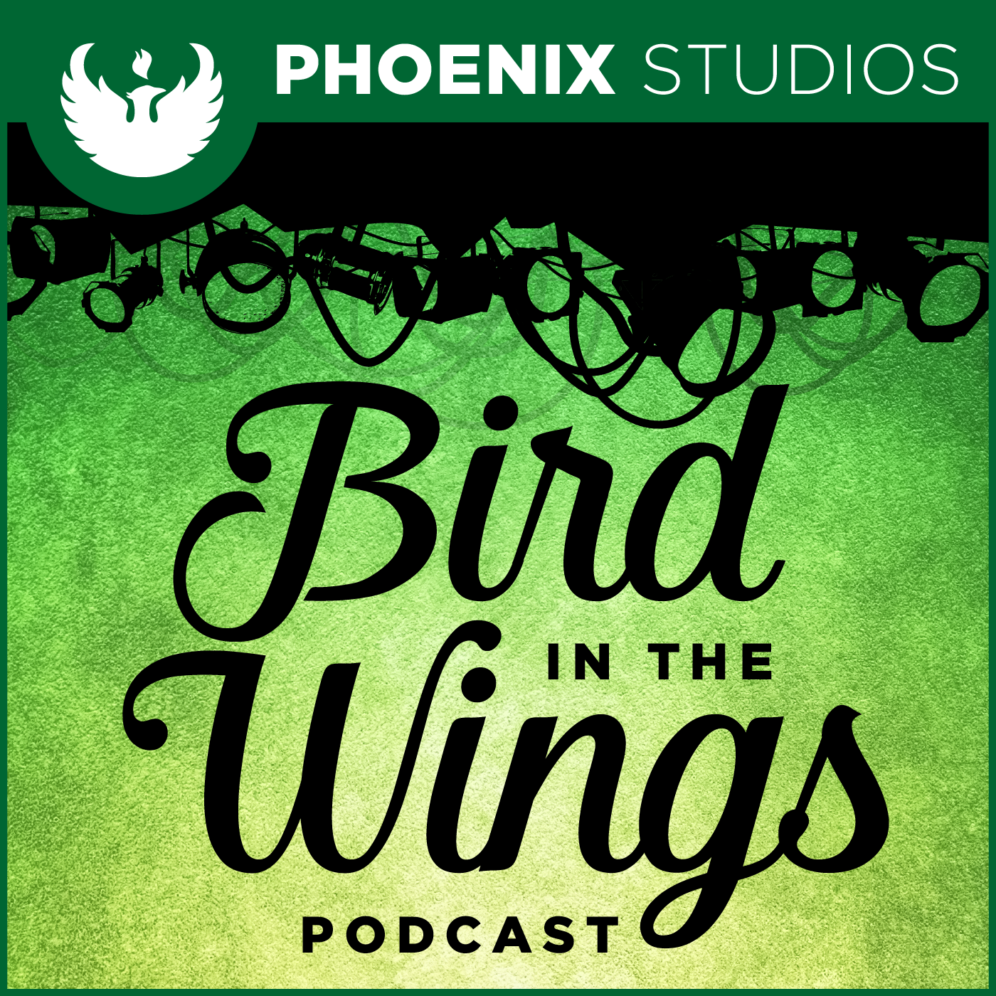 Bird in the Wings - A UWGB Podcast