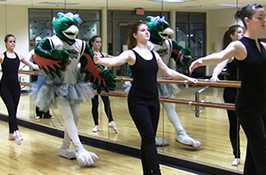 Dance of the Sugar Plum Phoenix: Happy Holidays from UW-Green Bay