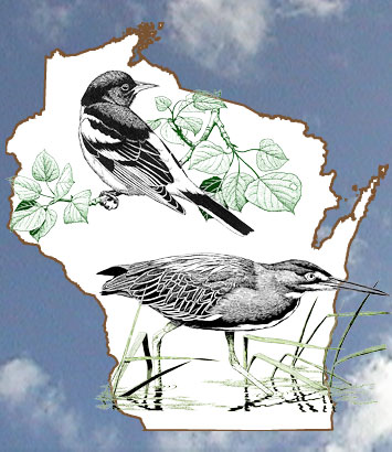 Wisconsin Breeding Bird Atlas Homepage