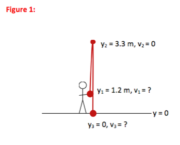 force and maximum height Physics exam 2 prelecture questions how does the maximum height of the two you are investigating the impulse of a force exerted on a brick when the brick's.