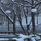 Snow scenes on the UW-Green Bay campus, December 2013