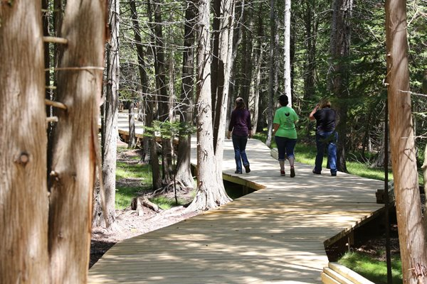 UW-Green Bay students walk on a boardwalk through a nature preserve.