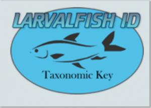 Resources Aquatic Invasive Species Uw Green Bay