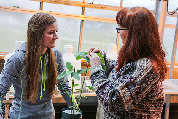 Working in the UW-Green Bay Lab Sciences greenhouse.