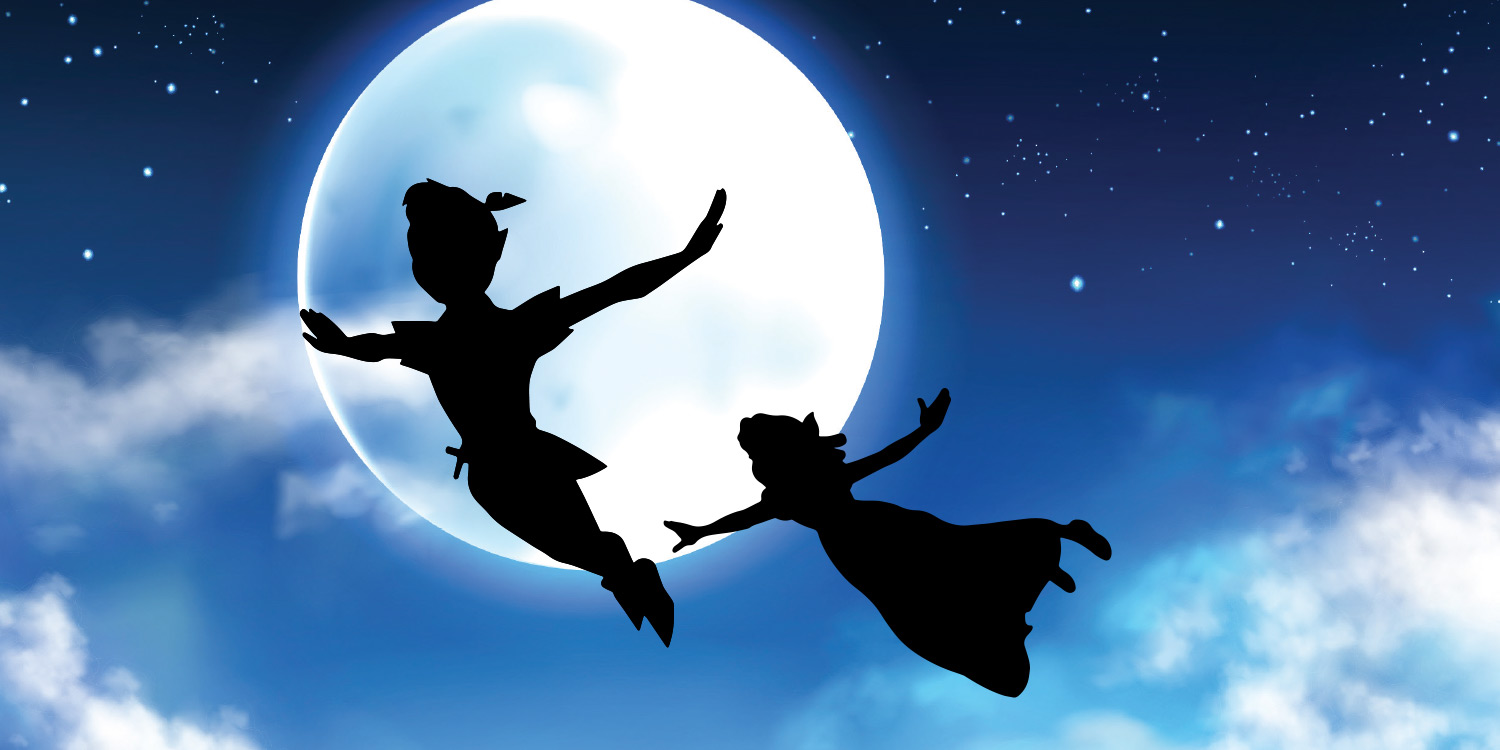 Peter Pan & Wendy image
