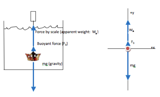 Buoyant Force Problem  Apparent Weight