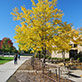 UW-Green Bay campus, early fall, Sept. 2014